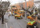Cortes de calles o carriles por trabajos de conservación de arbolado y zonas verdes en Carabanchel
