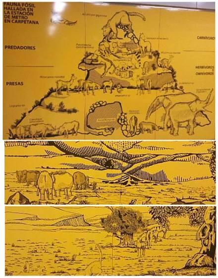 fauna-vegetacion-prehistorica-carabanchel