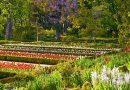 Jardín Botánico, bonito paseo de primavera