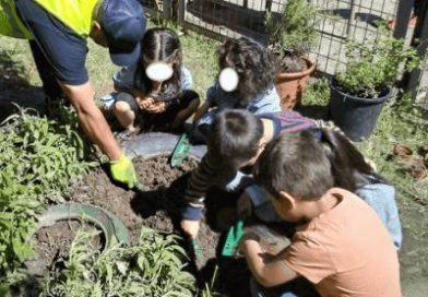Nuestros vecinos del Distrito de Latina han creado un Programa de Voluntariado