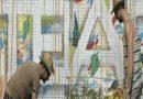 Carabanchel dentro del proyecto «Cultiva la Amistad» de cesión de huertos urbanos a entidades sociales