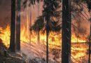 La evidencia de la crisis climática es el planeta en llamas