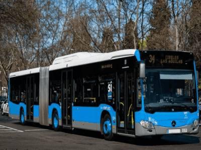 linea34