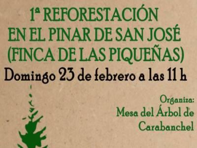 1reforestacion