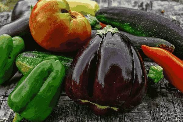 vegetales-huerto