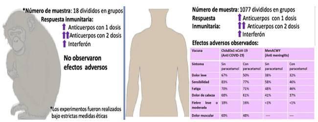 vacuna-oxford