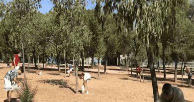 Carabanchel denuncia falta de mantenimiento y riego de árboles en el Parque de las Cruces. Riego realizado por vecinos y vecinas [Vídeo]